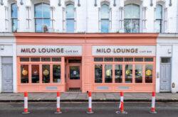 Milo Lounge
